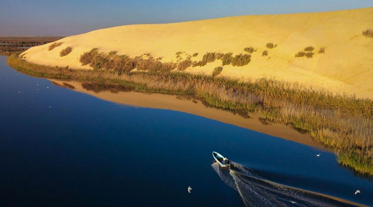 بحيرة الأصفر بالأحساء...أكبر تجمع مائي في منطقة الخليج ومحمية طبيعية