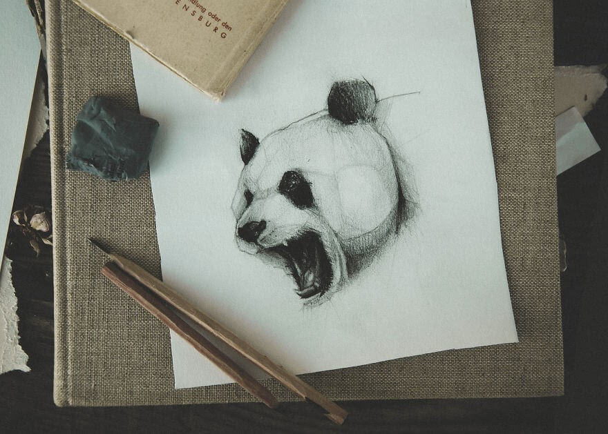 07-The-Panda-Mike-Koubou-Stylized-Sketchbook-Animal-Pencil-Drawings-www-designstack-co