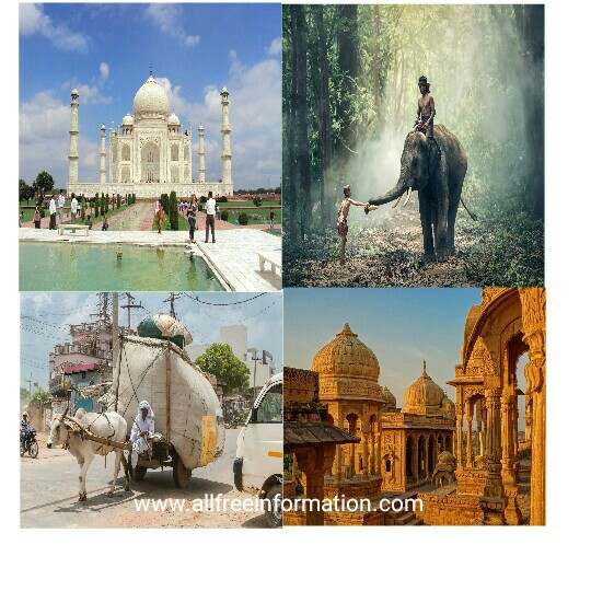 The interesting facts about india