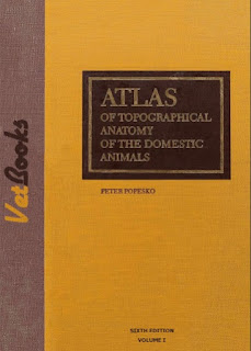 Atlas of Topographical Anatomy of the Domestic Animals