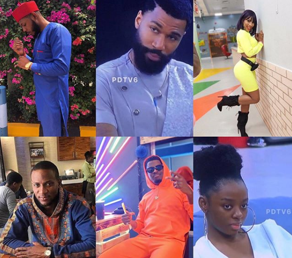 Meet #BBNaija2019 Finalists: Mercy, Mike, Frodd, Omashola, Seyi and Diane