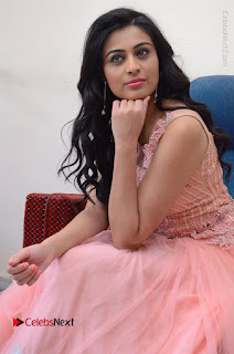 Actress Neha Hinge Stills in Pink Long Dress at Srivalli Teaser Launch  0106.JPG