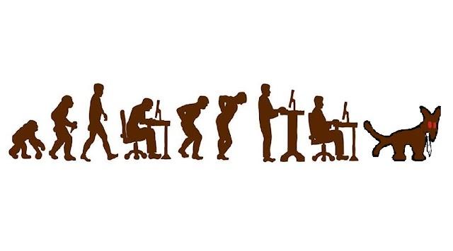 Ergonómia a gyakorlatban, avagy hogyan őrizzük meg a mozgékonyságunkat és előzzük meg a mozgásszervi megbetegedéseket egy életen át