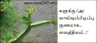 Remedy for sprain in leg/neck/spinal/ankle | Paati Vaithiyam | Suluku | Swelling | Home Remedies | சுளு‌க்கு | treatment for narambu suluku | suluku treatment in tamil, narambu suluku, neer suluku treatment, cramp, muscle pain, suluku home remedies