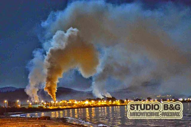 Νίκας: Εντολή προσωρινής διακοπής λειτουργίας των πυρηνελαιουργείων που δεν συμμορφώνονται με τις υποδείξεις