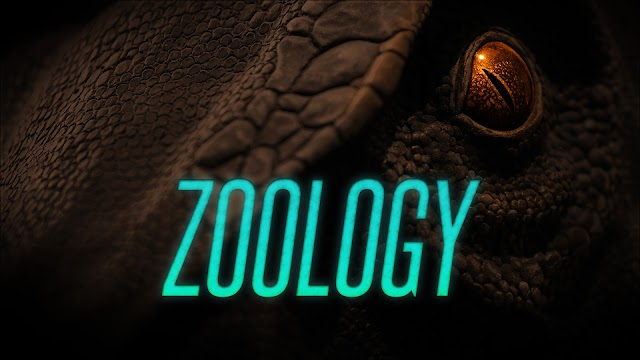 12th Bio-Zoology Loyola EC Full Guide 2020-21 Samples TM
