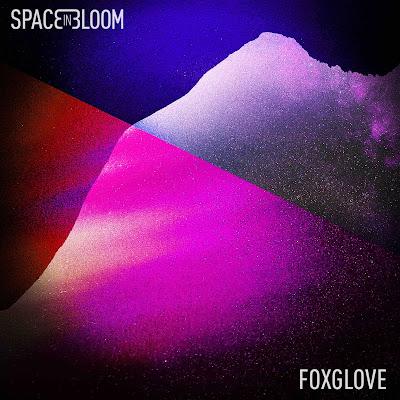 Foxglove est le deuxième EP du quatuor parisien Space In Bloom