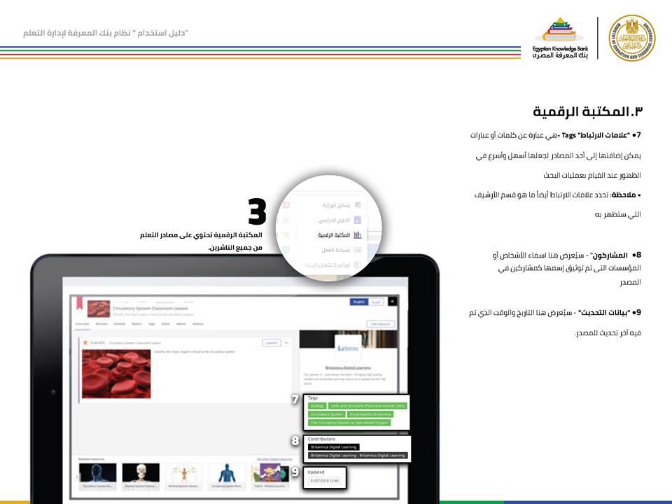 دليل استخدام بنك المعرفة المصري لطلاب الصف الأول الثانوي وكيف يحقق الطالب اكبر استفادة منه ؟ 29