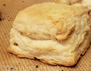 Sourdough Flaky Buttery Biscuits
