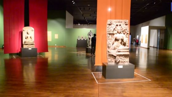 Bihar Museum Image