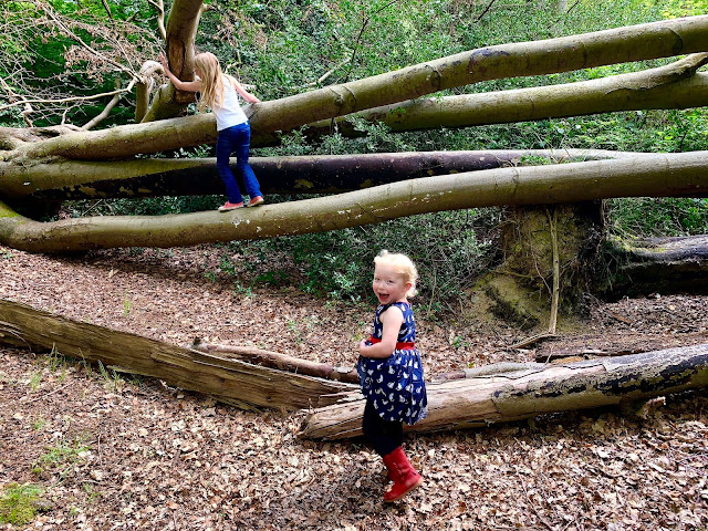 My girls climbing on trees in Epping Forest