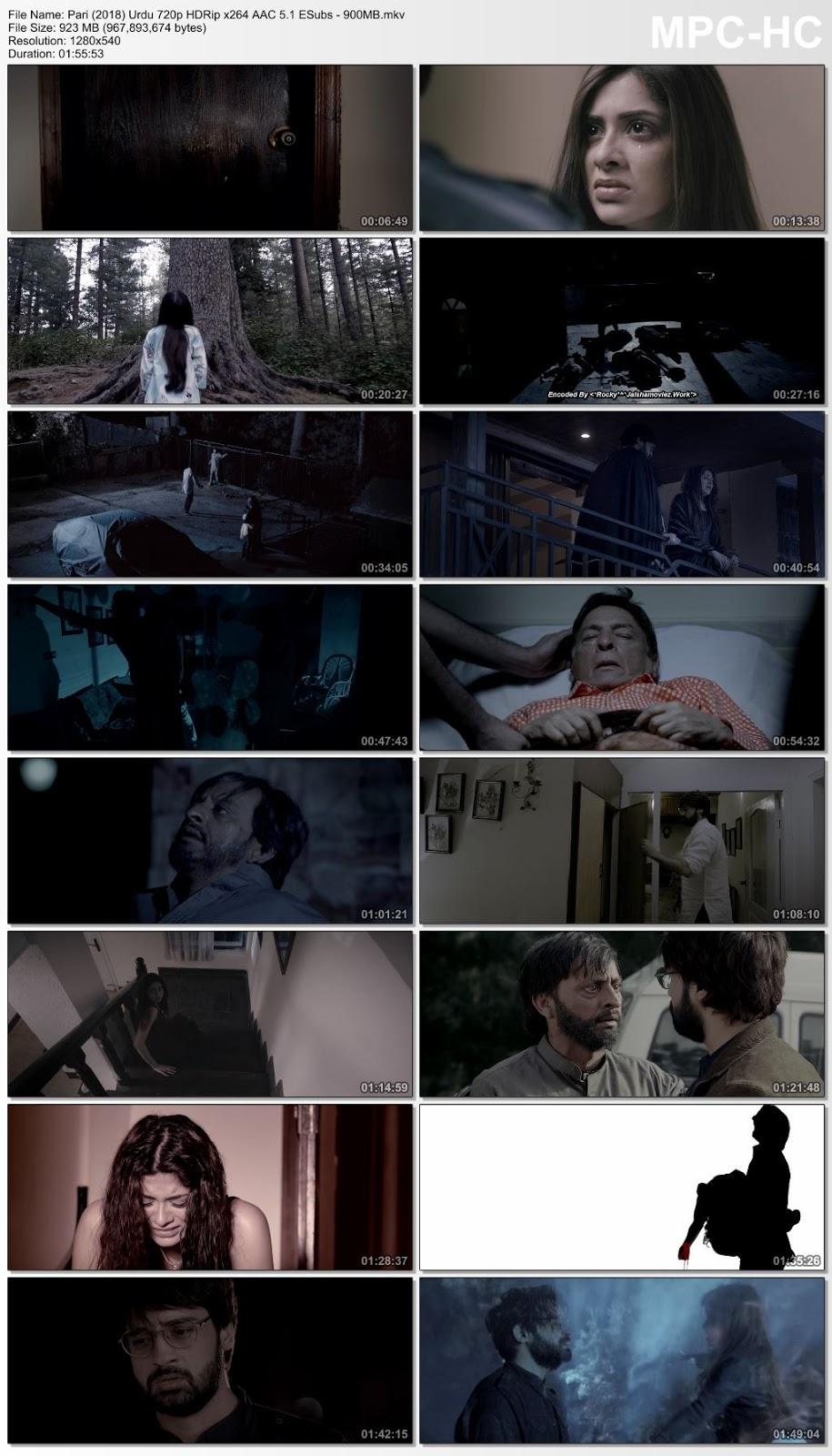 Pari (2018) Urdu 480p HDRip x264 AAC ESubs – 350MB Desirehub