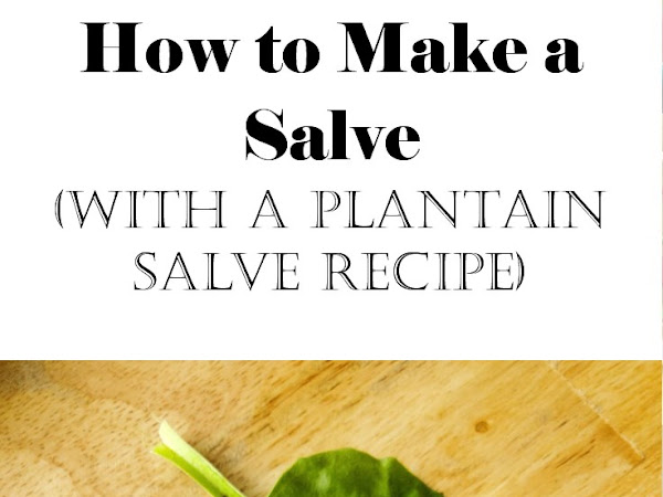 How to Make a Salve - with a Plantain Salve Recipe