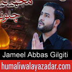 https://humaliwalaazadar.blogspot.com/2019/08/jameel-abbas-gilgiti-nohay-2020.html