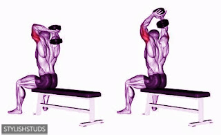 Triceps extension excercise shown by anime