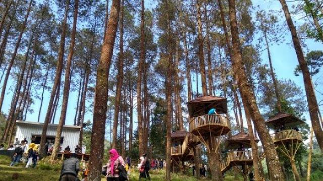 The Lawu Park Karanganyar, Penginapan + Wisata Alam