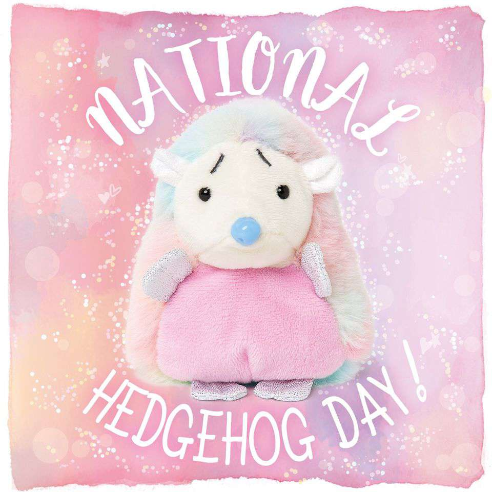 National Hedgehog Day Wishes Awesome Picture