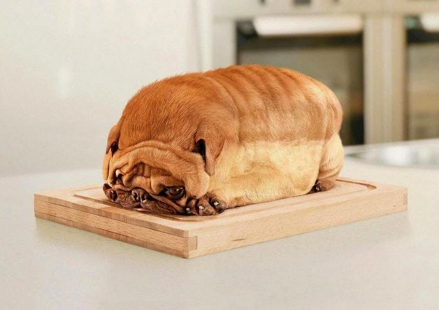 bulldog loaf of bread