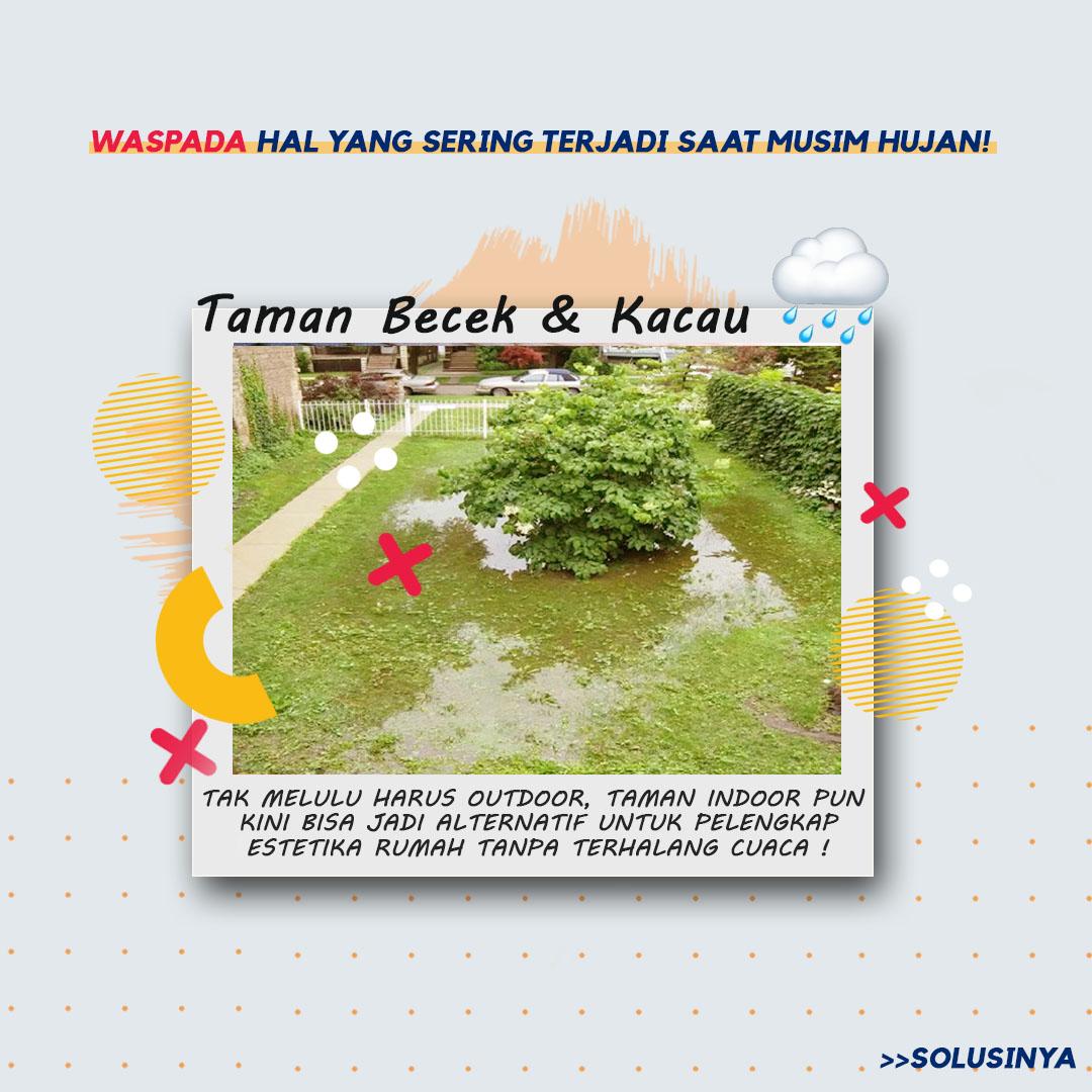 tips taman rumah anti rusak musim hujan