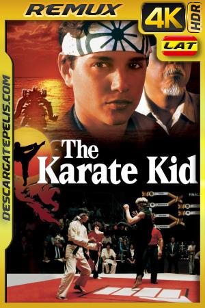 Karate Kid (1984) BDREMUX 4K HDR Latino – Ingles
