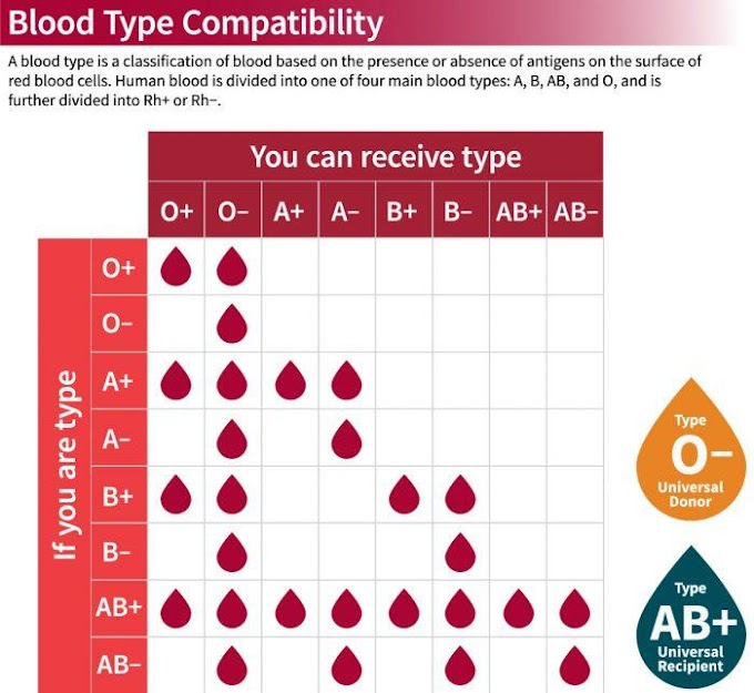 DO YOU KNOW YOUR BLOOD GROUP? GET TO KNOW IT NOW!