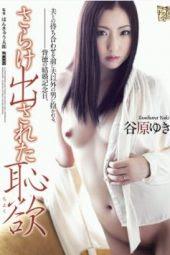 Tanihara Yuki Married Woman
