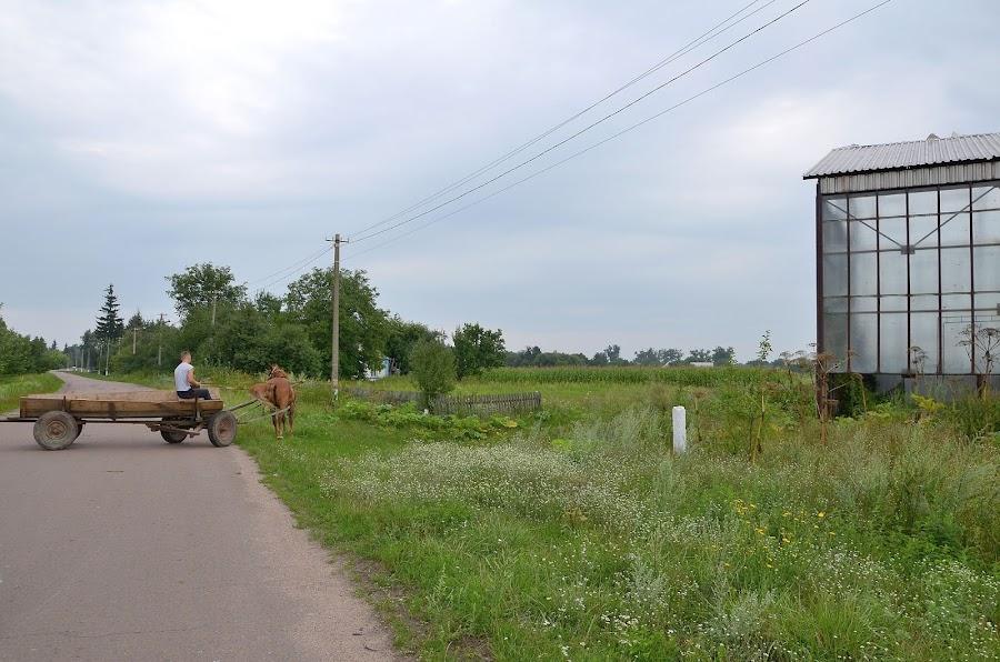 Село Вересы