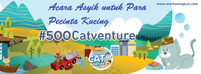 Friskies #500Catventure; Acara Asyik untuk Para Pecinta Kucing