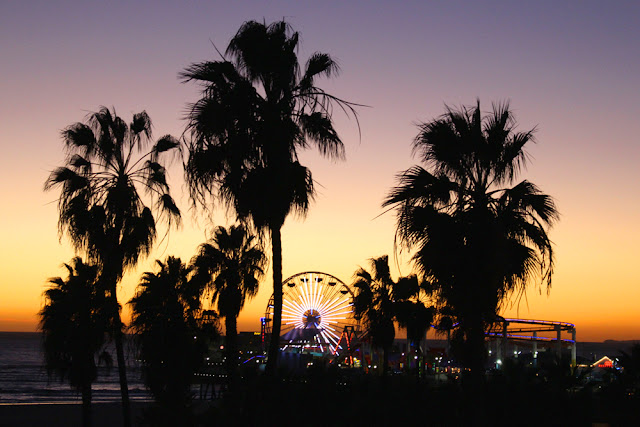 Palm trees at sunset, Santa Monica - weekend in Los Angeles, travel blog