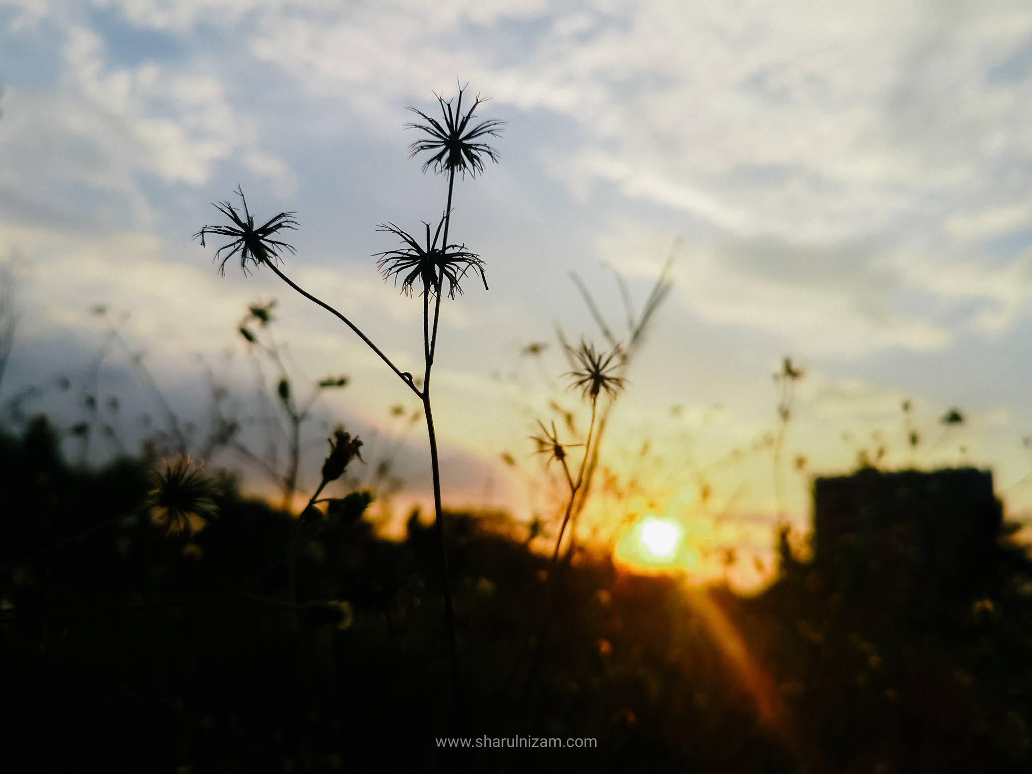 Matahari Terbenam Di Gombak