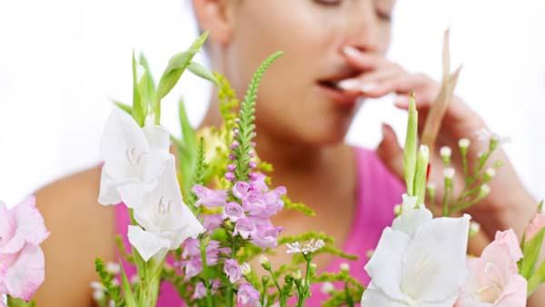 Madu dan Jahe Sebagai Bahan Alami untuk Mengobati alergi