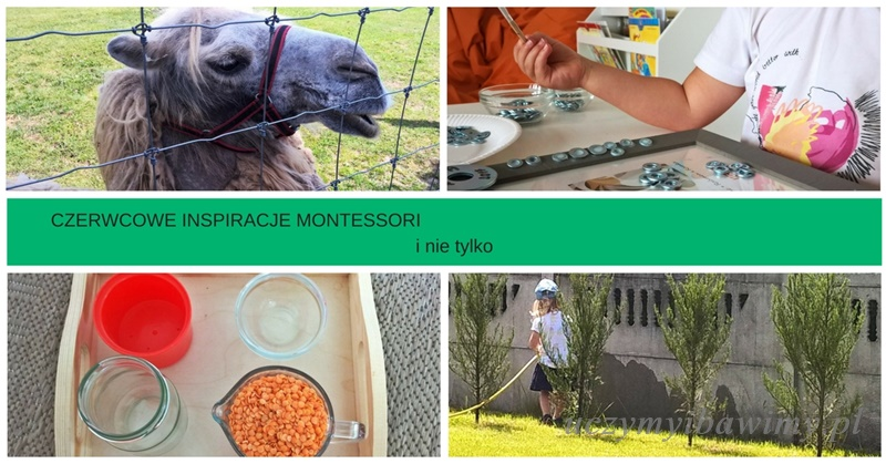 Czerwcowe inspiracje Montessori