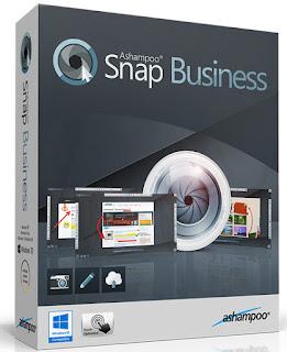 Ashampoo Snap Business 9.0.3 Multilingual Full Crack