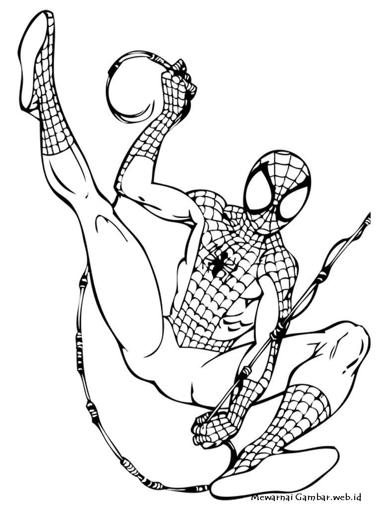 Mewarnai Gambar Spiderman Mewarnai Gambar