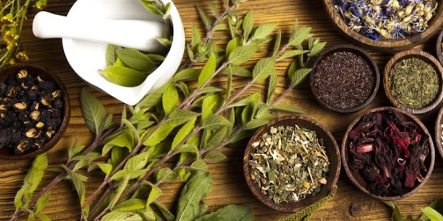 Herbalist volunteers to treat COVID-19 patients for free