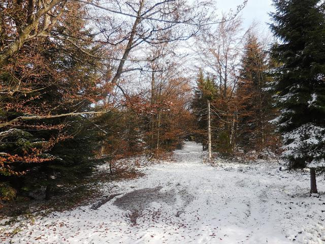 Na Mogielicę przez Jasień i Krzystonów