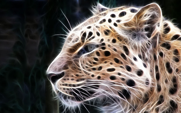 Wallpaper Leopard 3d Wallpapers