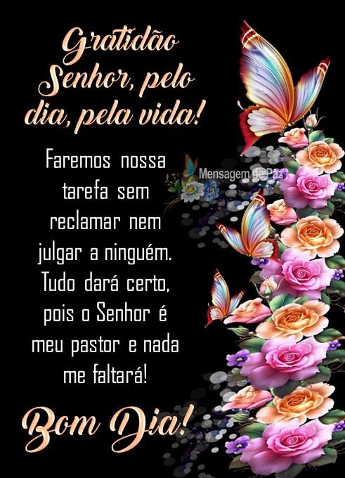 Gratidão Senhor, pelo dia, pela vida!  Faremos nossa tarefa sem   reclamar nem julgar a ninguém.  Tudo dará certo,   pois o Senhor é meu pastor   e nada me faltará!  Bom Dia!