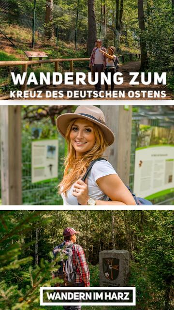 Rundwanderung zum Kreuz des deutschen Ostens  Wandern im Harz  Luchsgehege Bad Harzburg 22