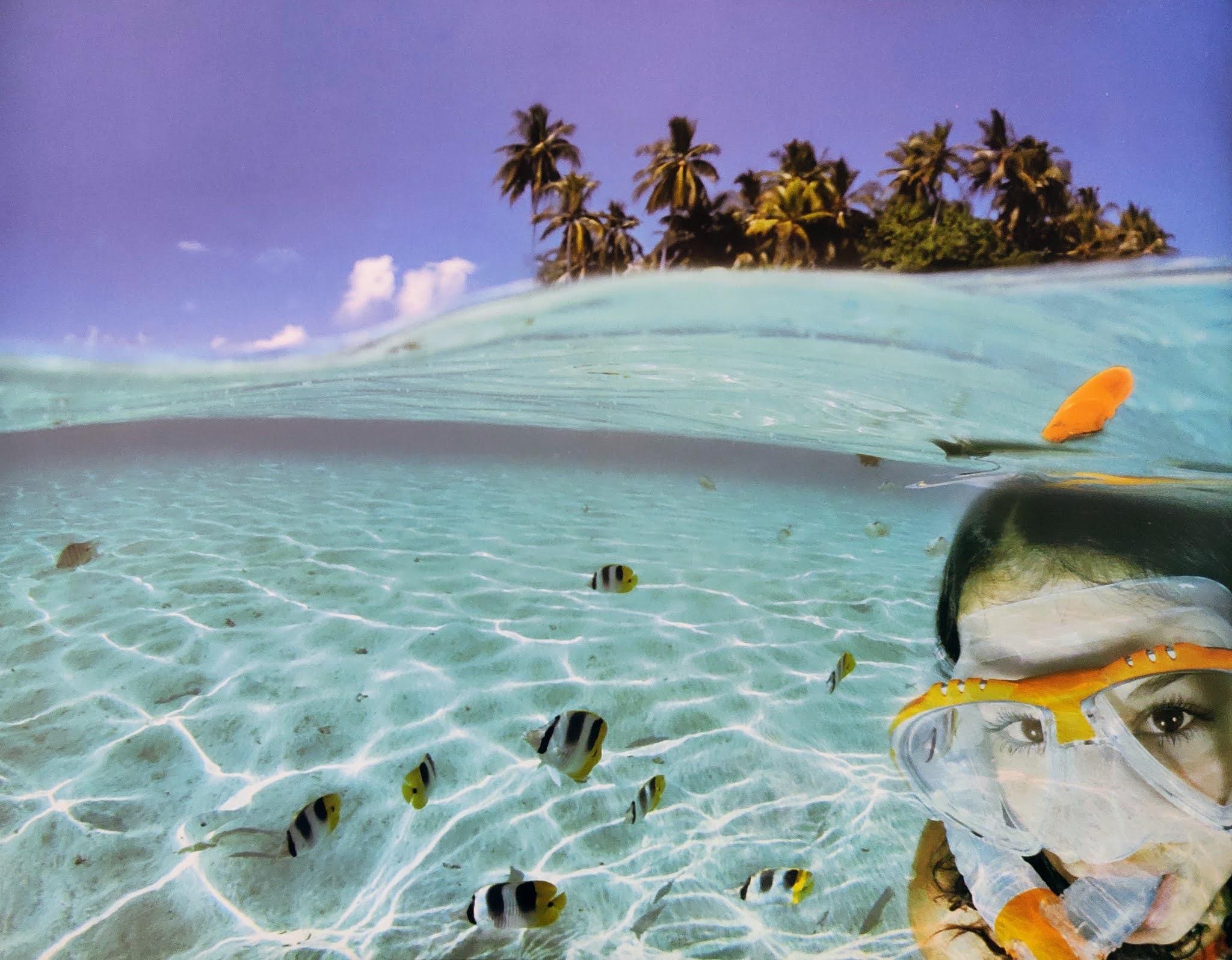 Image contain a sea beach