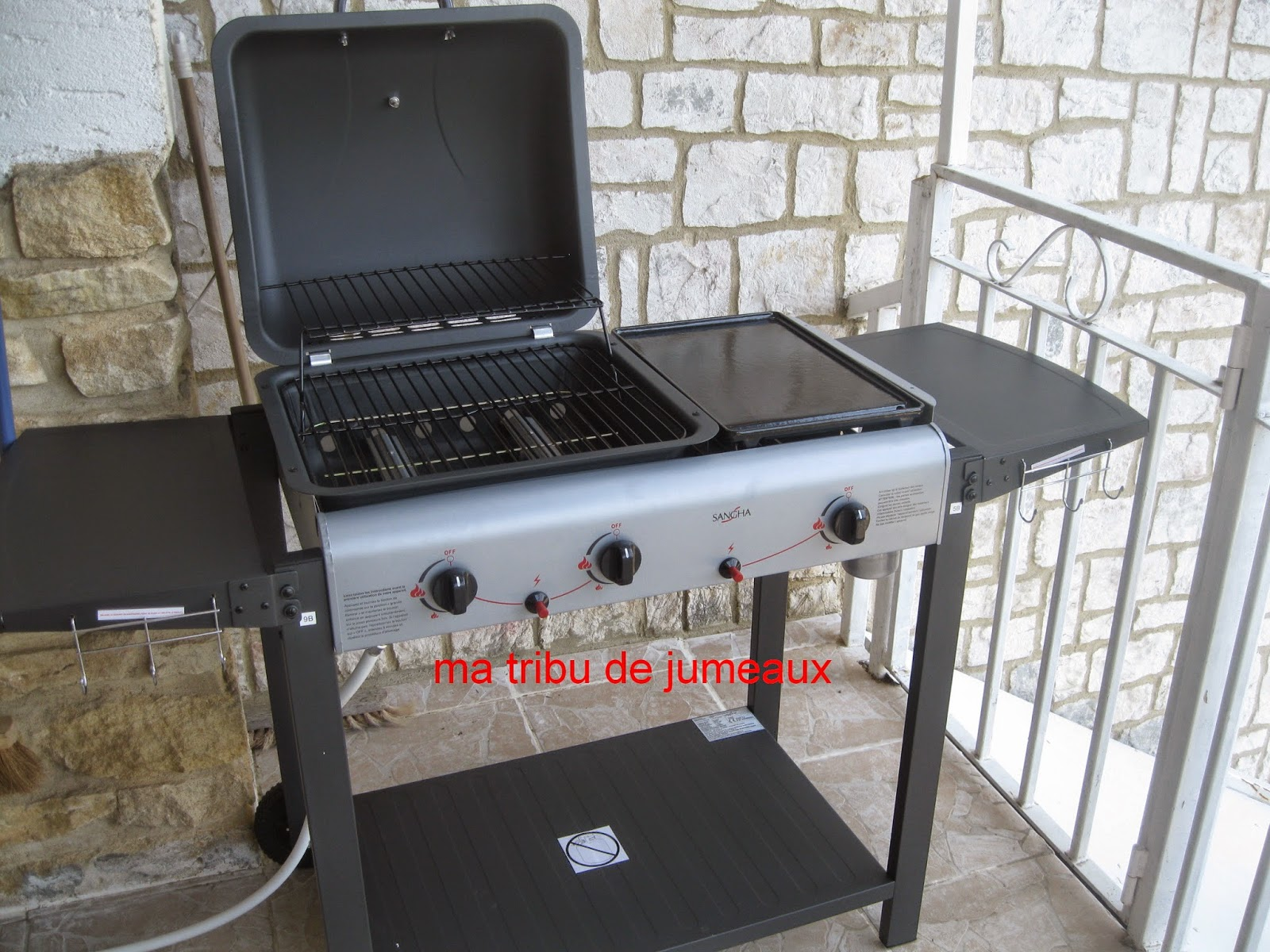 barbecue pas cher electro depot. Black Bedroom Furniture Sets. Home Design Ideas