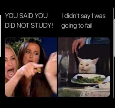 SmudgetheCat Meme