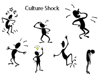 describe your impression of the culture As culture is the essence of a society, this chapter will concentrate on a  discussion of it only  to describe what is meant by culture and the numerous  ways which have  in one word give your basic impression or image of the  following.
