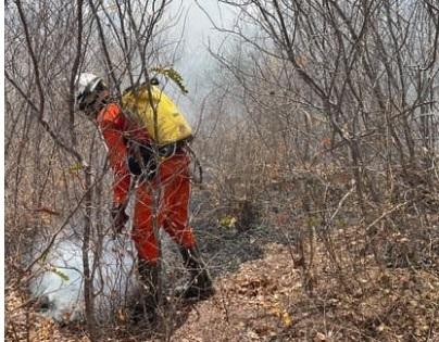 Seis municípios da Chapada Diamantina  são atingidos por incêndios