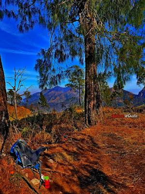 Porter Gunung Wilis - Paket Wisata Pendakian Gunung Wilis