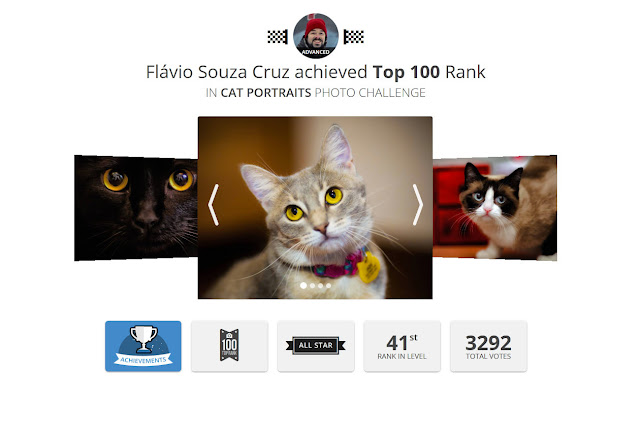 https://gurushots.com/achievements/cat-portraits/flaviosc6?tc=27655b7dfd45e76eacee44baca440133