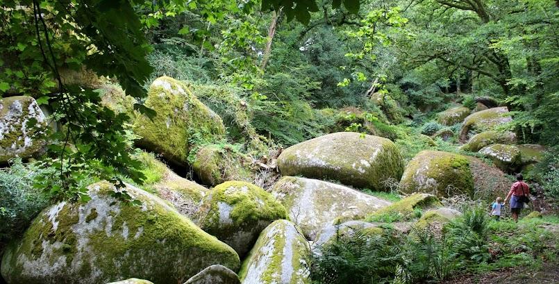 Huelgoat, las jedyny w swoim rodzaju / Huelgoat, une forêt extraordinaire