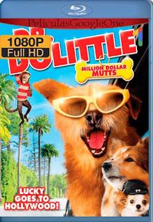 Dr. Dolittle 5[2009] [1080p BRrip] [Latino- Ingles] [GoogleDrive] LaChapelHD