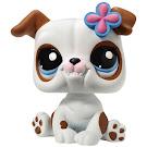 Littlest Pet Shop Blythe Loves Littlest Pet Shop Bulldog (#2106) Pet