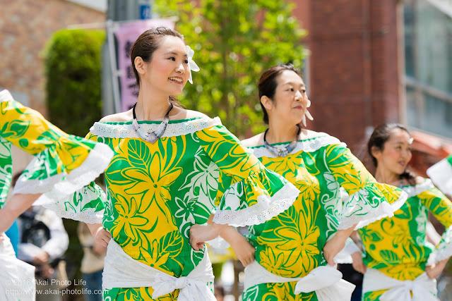 マロニエ祭り、カハレフラ&タヒチスタジオの写真 7